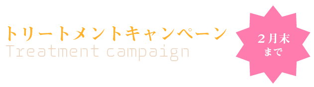 campFeb-A