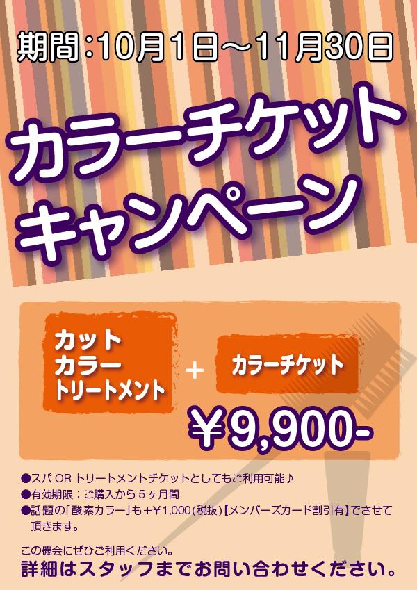 color-campaign_A4-min